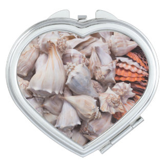 Key West, seashells Vanity Mirror