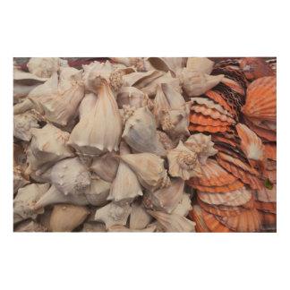 Key West, seashells Wood Wall Art