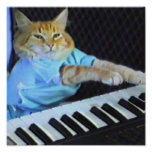 Keyboard Cat Canvas Print! Poster