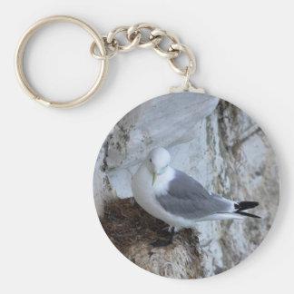 Keychain: Adult Kittiwake Gull Key Ring