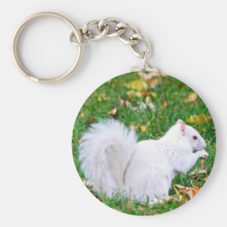 Keychain - Albino Squirrel