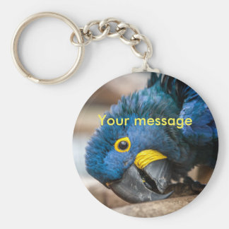 Keychain featuring cute Hyacinth Macaw parrot