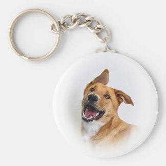 "keychain featuring Oscar the ""want to be"" Lab"
