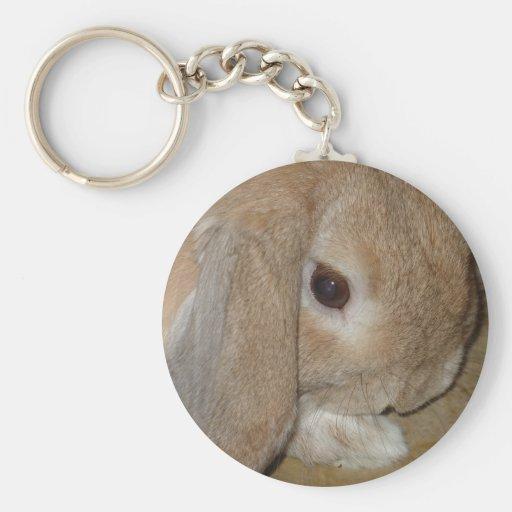 Keychain or Keyring - Lop Eared  Dwarf Rabbit