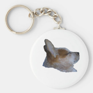 Keychain, Red Dog Sleeping Basic Round Button Key Ring