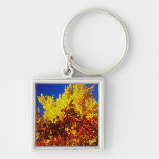 Keychain with Fall photo