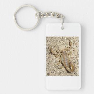 Keychain with Scorpion