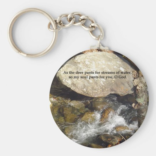 Keychains: Stream Psalm Basic Round Button Key Ring