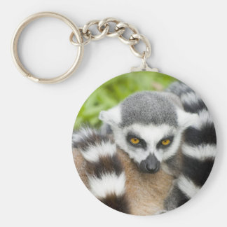 Keyring - Cute Lemur Stripey Tail Basic Round Button Key Ring