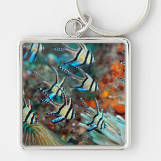 keyring with cardinal fish design