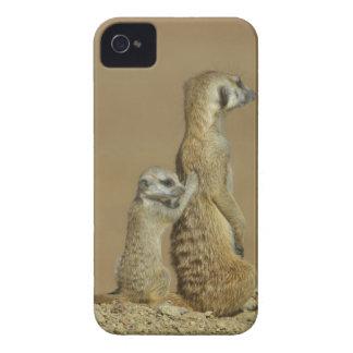 Kgalagadi National Park, Botswana, Africa iPhone 4 Cases