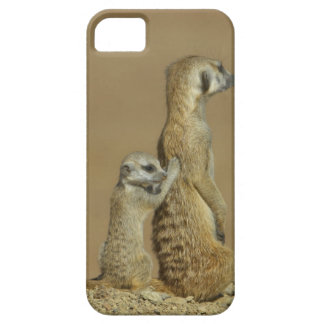 Kgalagadi National Park, Botswana, Africa iPhone 5 Cover
