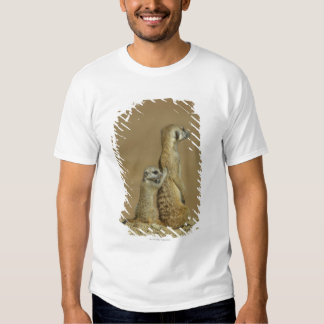 Kgalagadi National Park, Botswana, Africa T-shirts