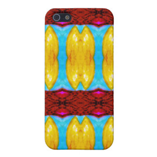 """""""Khajane"""" meaning """"Treasures"""" products Cover For iPhone 5"""