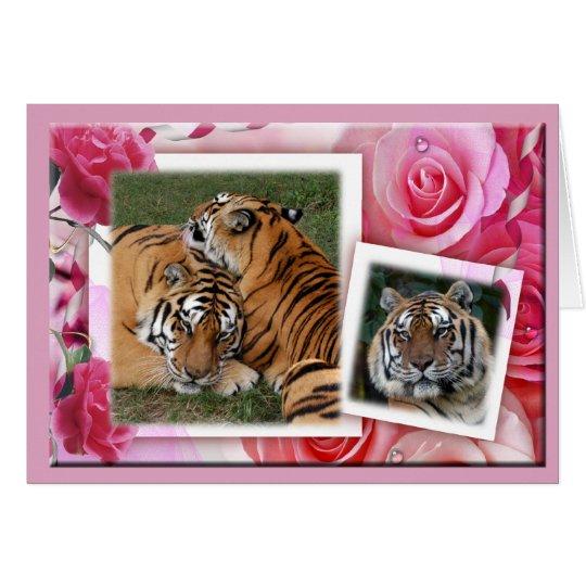 Khan-00100-65x45 Card