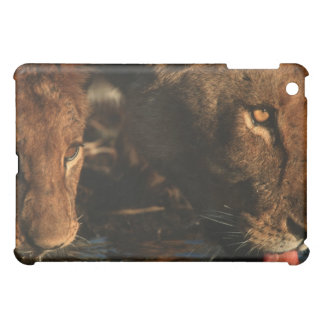 Khwai River, Moremi Wildlife Reserve, Botswana iPad Mini Cover