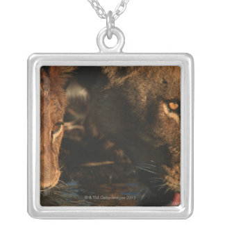 Khwai River, Moremi Wildlife Reserve, Botswana Silver Plated Necklace