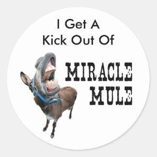 Kick Round Sticker