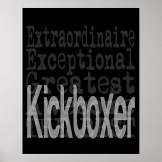 Kickboxer Extraordinaire Poster