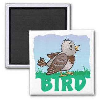Kid Friendly Bird Magnets