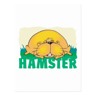 Kid Friendly Hamster Post Cards