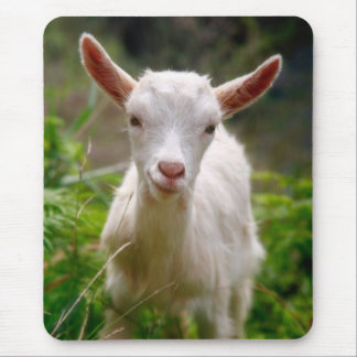 Kid Goat Mouse Mat