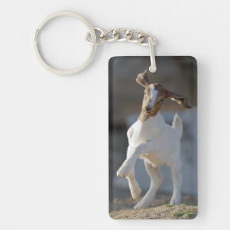 Kid goat playing in ground. Double-Sided rectangular acrylic key ring