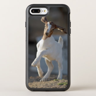 Kid goat playing in ground. OtterBox symmetry iPhone 8 plus/7 plus case