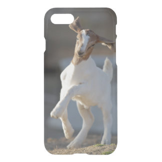 Kid Goat Playing iPhone 8/7 Case