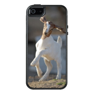 Kid Goat Playing OtterBox iPhone 5/5s/SE Case
