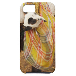 Kid in a saddlebag iPhone 5 case