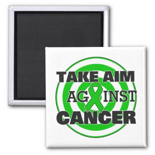 Kidney Cancer Take Aim Against Cancer Magnet