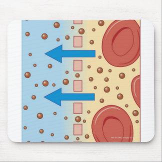 Kidney Dialysis Mouse Mat