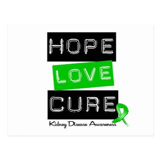Kidney Disease Hope Love Cure Postcard
