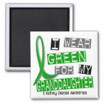 Kidney Disease I Wear Green For My Granddaughter