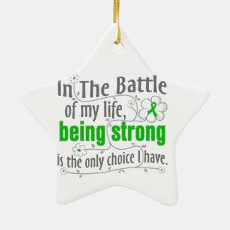 Kidney Disease In The Battle Ceramic Star Decoration