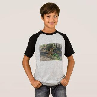 Kids cheetah shirt
