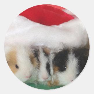 Kids Christmas Guinea Pigs Stickers