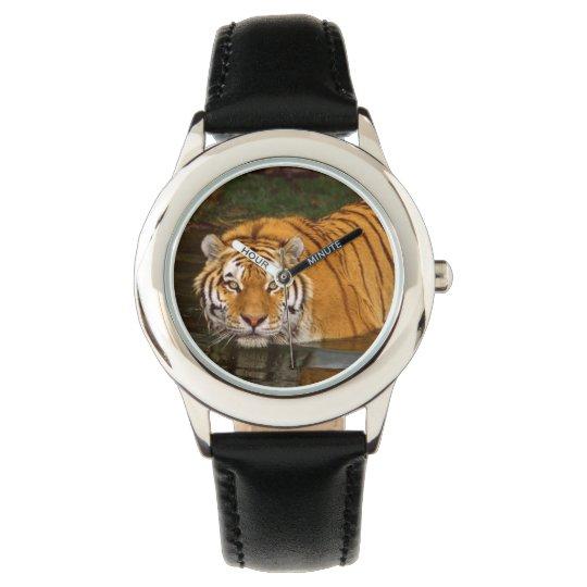 Kids Classic Watch/Wildlife Tiger Watch