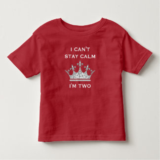 Kids Funny 2nd Birthday Can't Stay Calm I'm Two V3 T-shirts