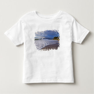 Kihei Beach, Maui, Hawaii, USA Toddler T-Shirt