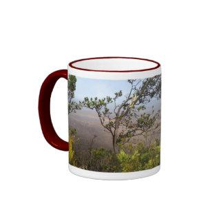 Kilauea Caldera, Hawaii Ringer Mug