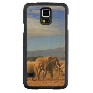 Kilimanjaro And Elephants Carved Maple Galaxy S5 Case