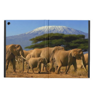 Kilimanjaro And Elephants Case For iPad Air
