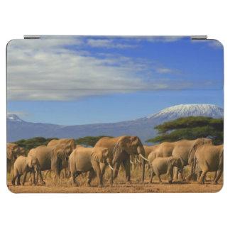 Kilimanjaro And Elephants iPad Air Cover