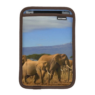 Kilimanjaro And Elephants iPad Mini Sleeve