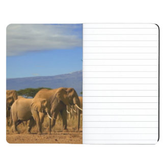 Kilimanjaro And Elephants Journal