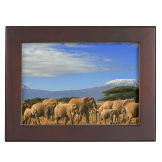 Kilimanjaro And Elephants Keepsake Box