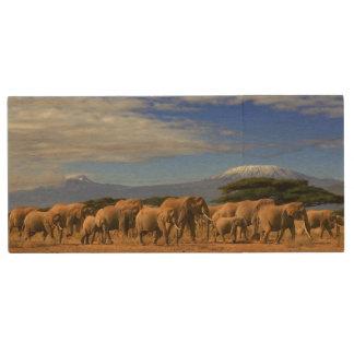 Kilimanjaro And Elephants Wood USB Flash Drive