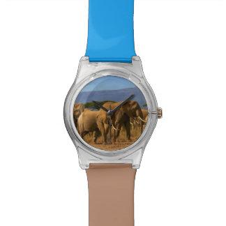 Kilimanjaro And Elephants Wristwatches